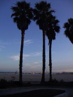Santa Barbara Waterfront @ sunset  Santa Barbara, CA #Sunset #SantaBarbaraBeach #SantaBarbara #California #USA
