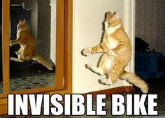 Bici invisibile!