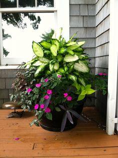 Flower planters planter pots ideas garden front door plants doors porch y. Shade Plants Container, Container Flowers, Flower Planters, Container Gardening, Flower Pots, Outdoor Planters, Garden Planters, Planter Pots, Planter Ideas