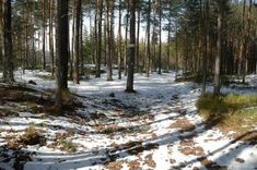 Kolumbovo vejce a Kupadla Snow, Outdoor, Outdoors, Outdoor Games, The Great Outdoors, Eyes, Let It Snow