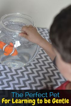 My boys are learning to be gentle with animals with these fun Lil' Fishys fish toys! The boys love them, and I love that they're learning! (ad)