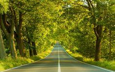 Road to Twilight