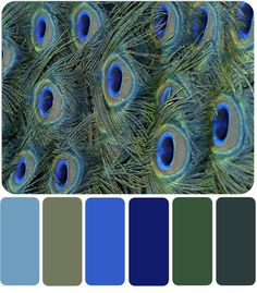 ideas master cozy blue Color Palette with Premo Polymer Clay Color Recipes Color Schemes Colour Palettes, Blue Colour Palette, Peacock Color Scheme, Blue Color Combinations, Peacock Colors, Paint Color Combos, Paint Combinations, Peacock Feathers, Design Seeds