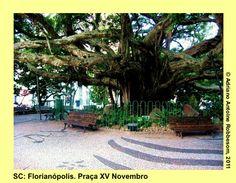 FLORIANÓPOLIS, Brazil.  Praça XV de Novembro