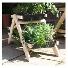 Tiered herb planter is one that has several shelves for placing plants. They may be indoor herb planter, outdoor herb planters, wooden herb planters, wroug Vegetable Garden Planters, Herb Garden Planter, Wooden Garden Planters, Herb Planters, Outdoor Planters, Plant Pots, Allotment Gardening, Container Gardening, Herbs Indoors