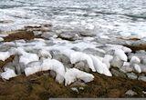 Greening Tundra Shows Arctic Heat - Truthdig