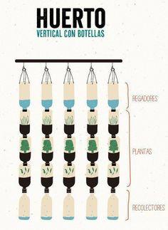 Huerto vertical para las ventanas con botellas desechables | Llamado a la Consciencia