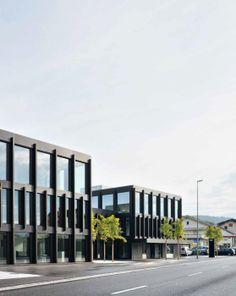 a f a s i a: Liechti Graf Zumsteg Architekten