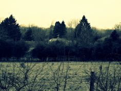 february across the common by LisaJLangrish, via Flickr