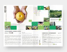 Farmers Market - zhongxing.h
