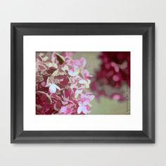 Hydrangeas No. 4 Framed Art Print by ArtsyCanvasGirl Designs