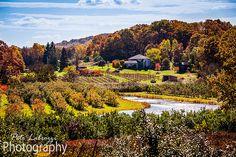 Fall Days « Pete Labrozzi Photography
