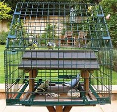 Is the food on your bird table being taken by squirrels or large birds rather than the wild birds you want to feed.Well here finally is the answer, the Meripac Choice Guard and conversion kit for bird tables. This pack allows you to surround your bird table with a guard and make it squirrel and large bird proof.The guard can be fitted around any square or oblong table up to W 420mm x D 420mm x H 500mm (height from table area to the roof apex). The guard has changeable mesh sides tha...