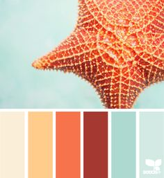 beach brights: linen, orange sorbet, coral, brick red, sea blue and sky blue