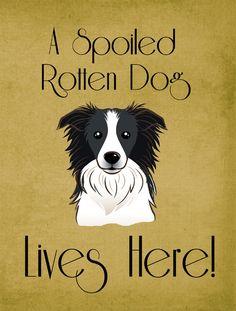 Border Collie Spoiled Dog Lives Here 2-Sided Garden Flag