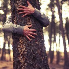 hugging trees...
