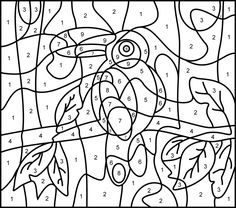 Toucan - Printable Color by Number Page - Hard                                                                                                                                                                                 Mais