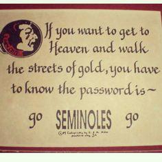 I love this...Go Noles!