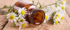 10 Essential Oil Remedies You Must Try