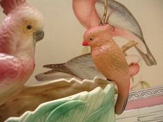 vintage celluloid birdy . bird . parakeet