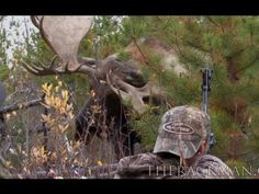 EPIC doesn't even begin to describe...   Bowhunter Captures Intense, Point-Blank Kill In This Moose Video
