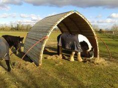 Horse Arc Testimonials, shelter for horses