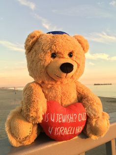 "Is U Jewish? Cuz U Israeli Hot Bear 10"" – Hollabears"