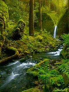 photo waterfall_baimf4uv.gif