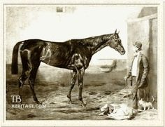 Kincsem was the toast of five European nations during her illustrious racing career.