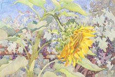 """Mammoth Sunflower with Black Monukka"", Carolyn Lord, 15x22, watercolor"