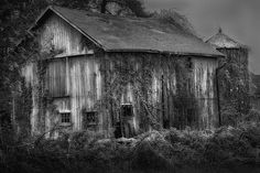 Black and White Contest 3rd place - Old Barn by Bill Wakeley - Fine Art America