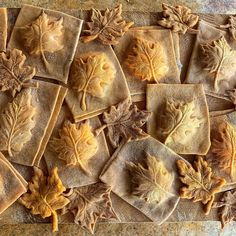 """Fiona Afshar on Instagram: """"Hello November! Fall has always been my favorite season. The time when everything bursts with its last beauty, as if nature had been saving…"""" Pasta Art, Hello November, Always Be, Fall Recipes, Everything, Thanksgiving, Seasons, Fall Food, Nature"""