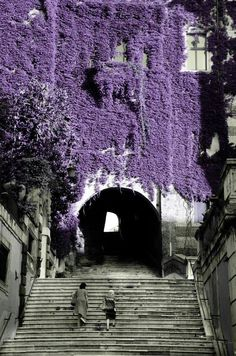 The smell on these steps is magical... Picturesque Salita dei Borgia in Rome, Italy