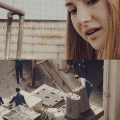 Niezgodna Divergent