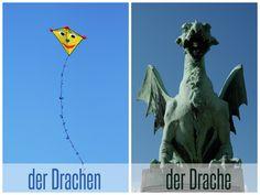 der Drache vs der Drachen