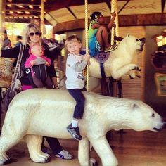 Carousel @ Denver Zoo