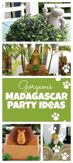 Madagascar Birthday Party Ideas - Spaceships and Laser Beams Safari Theme Party, Safari Birthday Party, Jungle Party, Circus Birthday, Birthday Party Decorations, Birthday Parties, 2nd Birthday, Birthday Ideas, Jungle Theme