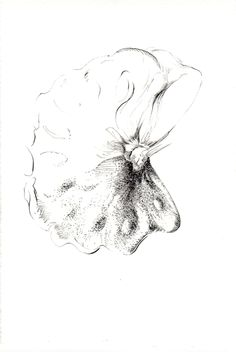 262 Seed Bank, My Works, Abstract, Drawings, Artwork, Summary, Work Of Art, Auguste Rodin Artwork, Sketches