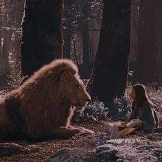Narnia Cast, Narnia 3, Narnia Lion, Lucy Pevensie, Edmund Pevensie, Dr World, Narnia Movies, Georgie Henley, Prince Caspian