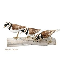 41 Best Archipelago Bird Wood Carving Sculptures Interior Gifts