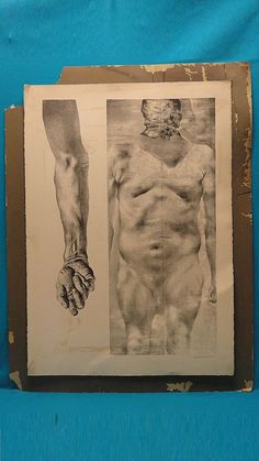 MONUMENTAL 70's SIGNED DONALD DEMAURO LITHOGRAPH BRUTALIST NUDE BODY STUDY 21/70
