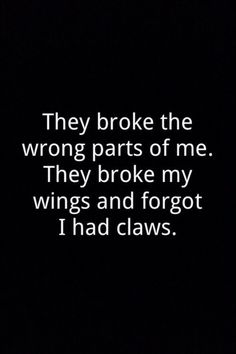 They broke the wrong parts of me.  They broke my wings and forgot I had claws.