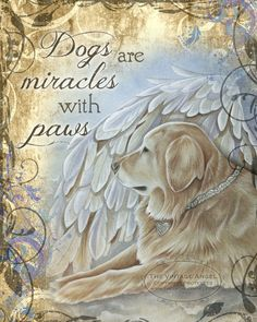 Golden Retriever dog angel art by The Vintage Angel Dog Quotes, Animal Quotes, Dog Sayings, I Love Dogs, Cute Dogs, Dogs Golden Retriever, Retriever Dog, Golden Retrievers, Pet Loss
