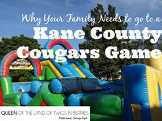 Why Your Family Needs to Go to a Kane County Cougars Game - www.queenofthelandoftwigsnberries.com