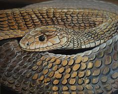 """Painted in a luxurious palette of gold, bronze and black, this is a female King Cobra snake with golden foreground scales.  This is a 12x12"""" square premium quality giclée art print from an original oil painting by UK artist Ellisa Hague.  Please visit www.EllisaHagueOriginal.com or the Etsy Shop to view more pieces."""