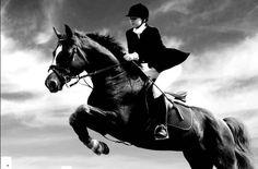 Horse Rodong
