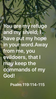 You are my refuge and my shield; I have put my hope in your word.Away from me, you evildoers, that I may keep the commands of my God!  Psalm 119:114-115