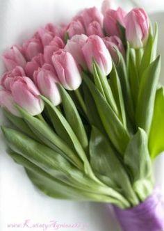 Bukiet z różowych tulipanów-