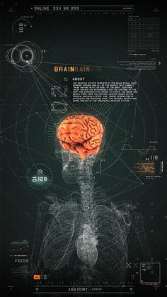 """FUTURISTIC MEDICAL INTERFACE """"This interactive touch screen presentation is an outstanding example for the importance of nice interfaces. Cv Inspiration, Graphic Design Inspiration, Creative Inspiration, Graphisches Design, Layout Design, Flat Design, Interaction Design, Interface Design, User Interface"""