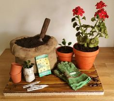 Potting Shed Scene by Susie …See the cake: http://cakesdecor.com/cakes/219745-potting-shed-scene